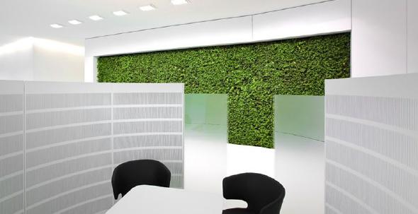 art aqua - grüne Wand